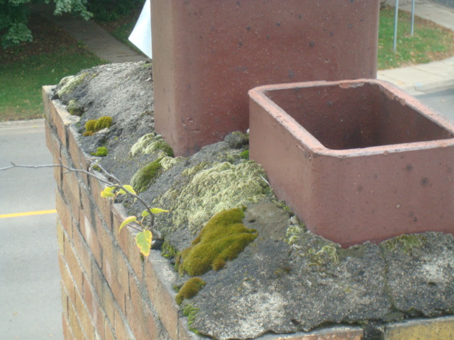 Typical Problems With The Top Of Chimneys