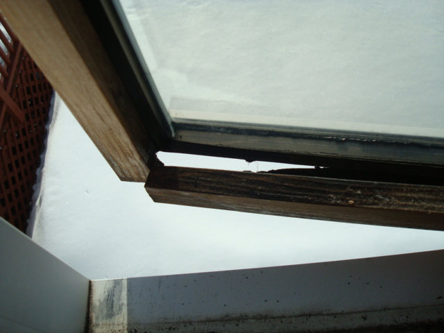 Preventing Your Expensive Windows From Rotting